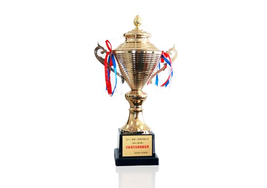 首届龙岩市政府质量奖杯