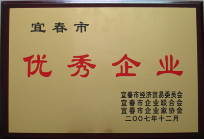 2007年宜春市优秀企业