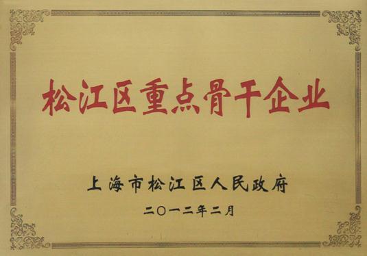 松江区重点骨干企业